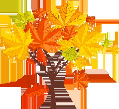 Gifs automne for Arboles que no se le caen las hojas en invierno